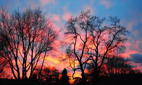 winter_sunset_by_1br0ken_r0b0t-d4riyi0