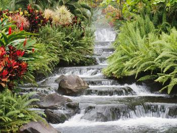 water-flowing-stream