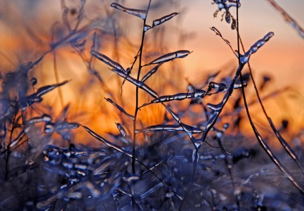 Sunset Ice Storm